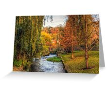 The Weirs in Winchester in Autumn Greeting Card