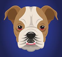 Bulldog  by threeblackdots