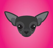 Black Chihuahua by threeblackdots