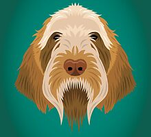 Spinone Italiano by threeblackdots