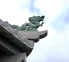 Sky Dragon - Ishigaki, Japan by amberfox17
