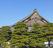 Ninomaru Palace, Nijo Castle by amberfox17