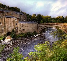 Aysgarth Mill by Guy  Berresford