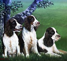 English Springer Spaniel Dog Portrait by Oldetimemercan