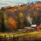 Country - Barn - The end of a season by Mike  Savad