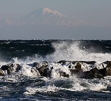 Wild Seas with Mount Baker in the Distance by TerrillWelch