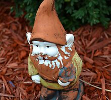 Gnome by Bailey Mattas