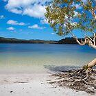 Lake Mackenzie by Mark Williamson