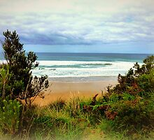 Great Ocean Road - Victoria by EdsMum