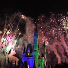 Magic Kingdom Fireworks  by Jill Vadala