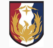 26th Sustainment Brigade by cadellin