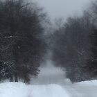 Snowy Road by Susan S. Kline