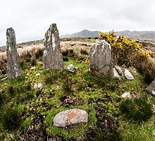 Ardgroom Outward Stone Circle by donberry