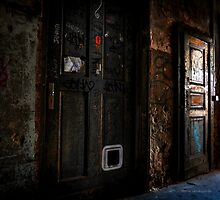 Rundown Door by Alex De Mirelle