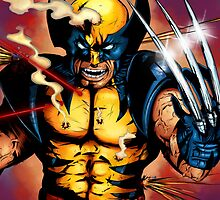 Wolverine, the beast by Edward Dippolito