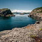 Lopez Island Coast by Mark Heller