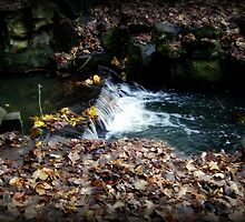 Flowing water... by shelleybabe2