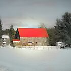 Red Roofed Barn, Denmark Maine by Elizabeth Thomas