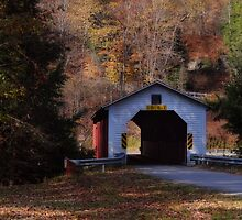 MaGees Mills Covered Bridge by vigor