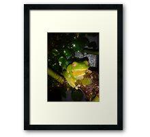 """ Kermit "" Framed Print"
