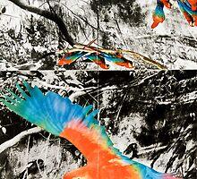Tropical Revers by jkartlife