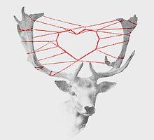 Lovely Deerie by Budi Satria Kwan