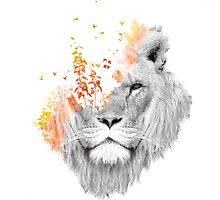 If I roar by Budi Satria Kwan