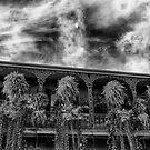 New Orleans 2 by Dragomir Vukovic