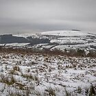 Mynydd Y Gaer - The Frosted Hill by digihill