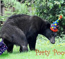 Party Pooper by Darren Quarin