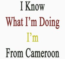 I Know What I'm Doing I'm From Cameroon  by supernova23