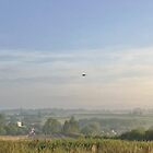 Goose over Twyford by Barry Thomas