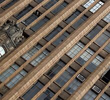 Manchester Unity Building by Suzanne Phoenix