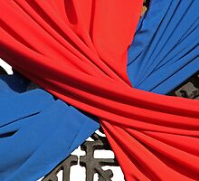 Blue and Red Sash by rhamm