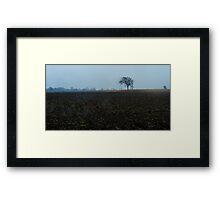 Farmer's field in November Framed Print