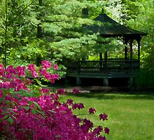 Garden Gazebo by Michael Shake