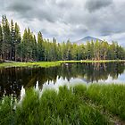 Yosemite Mini Lake Reflection by Jerome Obille