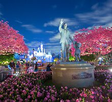 Disneyland, California by Jerome Obille