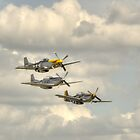 Mustangs by Nigel Bangert