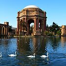Palace of Fine Arts. San Francisco by Igor Pozdnyakov