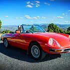 Alfa Romeo Spider by mtmeegallery