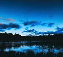 Swamp in Moonlight by Nazareth