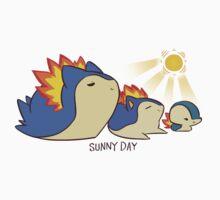 Sunny Day Attack..? by shavostars