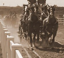 Olde Time Fall Fair by Kathy Rogers-Hartley
