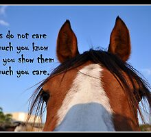Horses Don't Care How Much You Know by Barbara  Jean