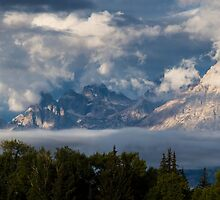 Foggy Weather on the Tetons by cavaroc
