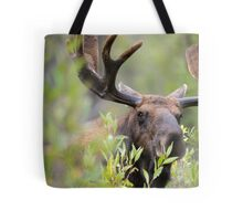 Bull Moose Smelling Bushes Tote Bag
