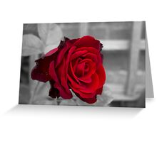 Passion red Greeting Card