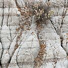 Theodore Roosevelt National Park Badlands Abstract by cavaroc