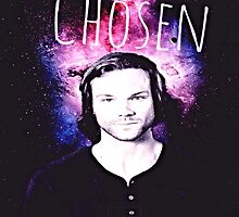 Sam: The Chosen by Eryx